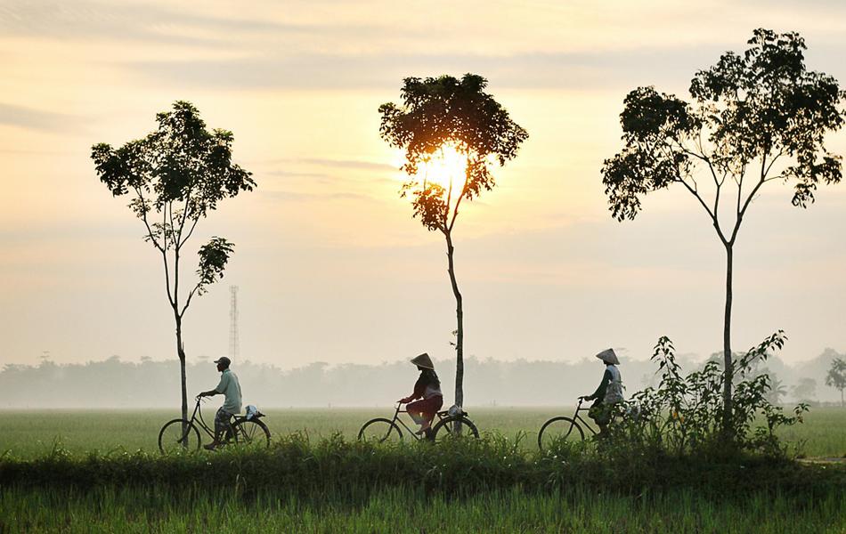 rejser til vietnam