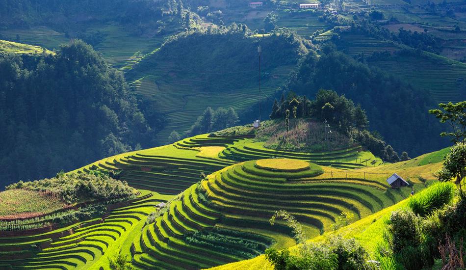 rejser til vietnam sommer